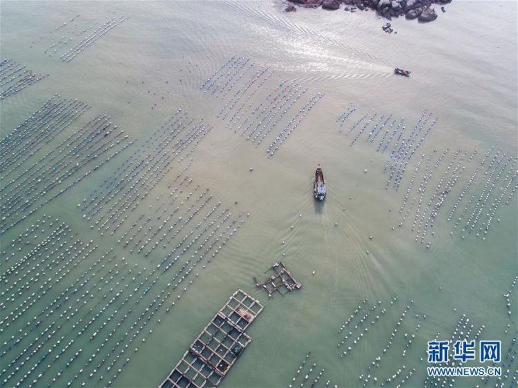 """大力发展海洋养殖经济和海岛旅游经济,实现了南麂由""""生态美""""向""""产业美"""