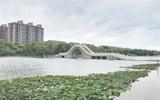 红莲湖水位上涨30厘米 部分桥面被水淹没