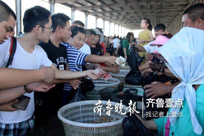烟台东口码头:2小时卖光千斤鲅鱼,爬虾上岸遭疯抢