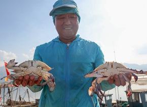 开海首日丰盛海鲜上岸 青岛市民码头抢购尝鲜