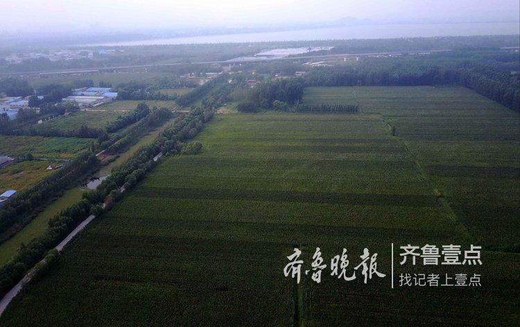 济南先行区百亿打造的科学城,看看在哪?