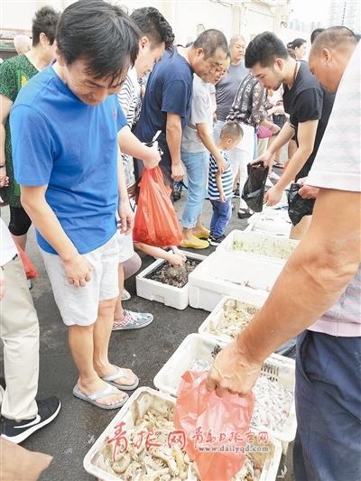 """调整优化供给侧 青岛休渔4个月海鲜不断供的""""秘密"""""""