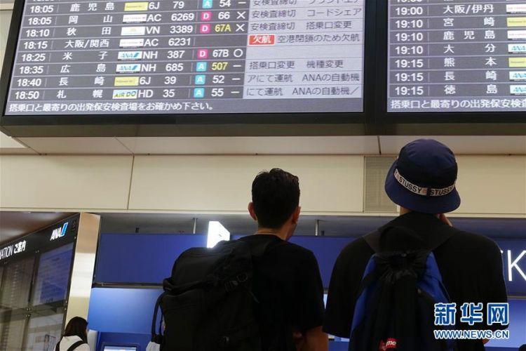 """台风""""飞燕""""侵袭日本11人死亡"""