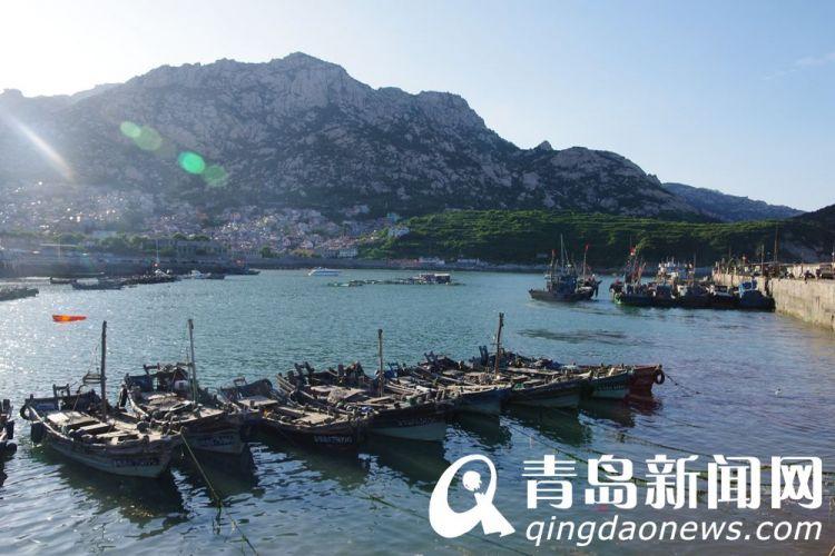 高清:初秋感受崂山渔村之美 刚上岸的海鲜这么吃