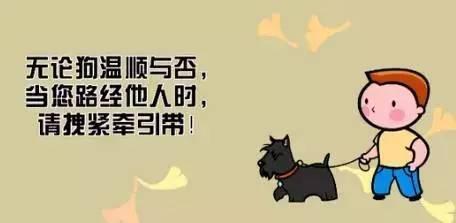 太猖狂!东营一市民遛狗不系绳还公然袭警!