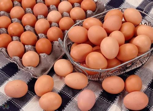 临淄公布一批食品抽检信息 东申幼儿园购进鸡蛋抽检不合格
