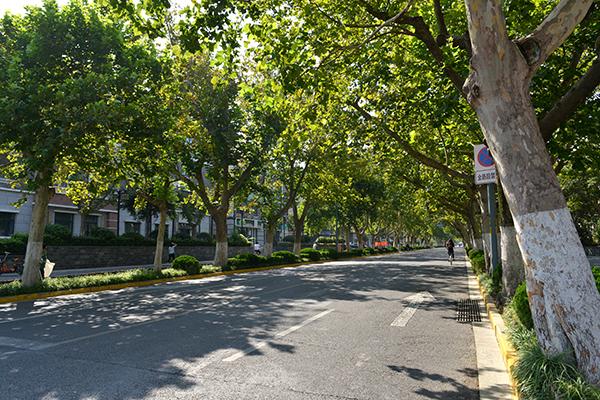 28  省府前街