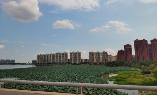 江西青岚湖省级自然保护区因违规开发建设被撤销
