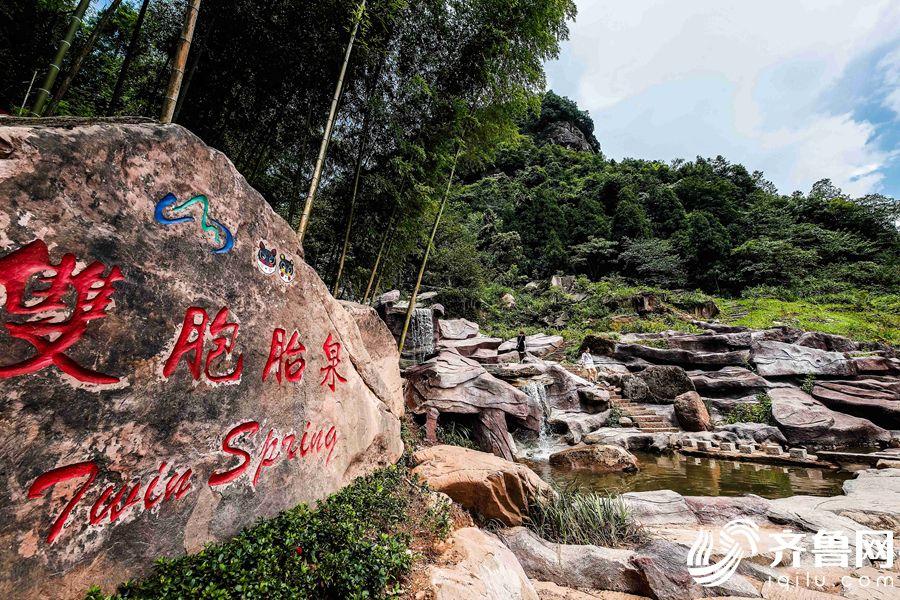 """清澈的""""双胞胎泉""""被青堰村人视为""""双生""""法宝。"""