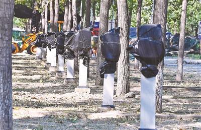 北京蟹岛附近多根新能源车充电桩闲置 已全部遮盖