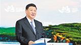 习近平:共享远东发展新机遇 开创东北亚美好新未来