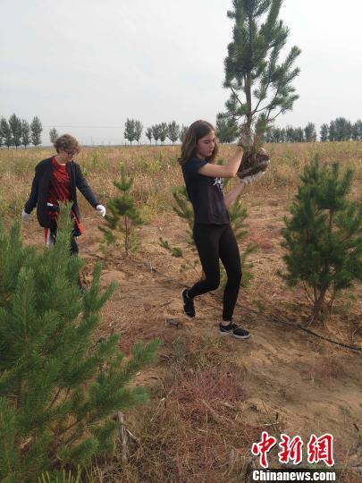17国青少年恩格贝义务植绿 激发保护环境情怀
