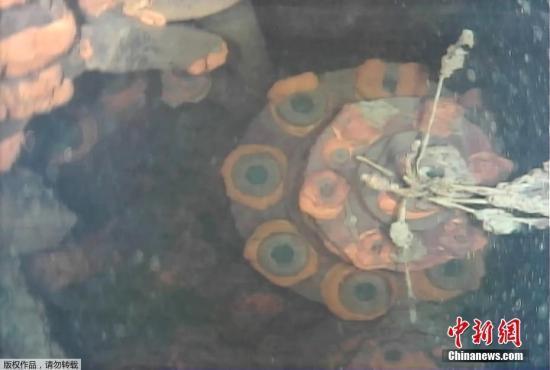 联合国官员:福岛核事故作业人员防辐射措施不充分