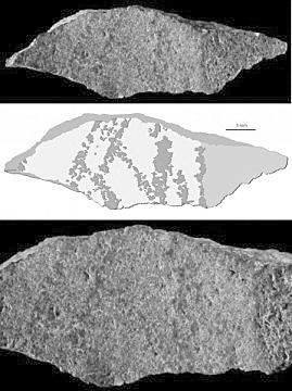 南非洞穴出土迄今最古老画作 距今约七万三千年