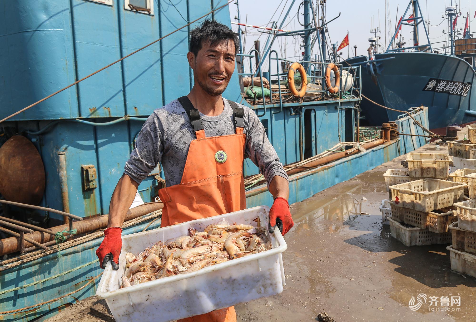 晒·秋 | 寿光羊口羊口开海第二周 渔船满载而归