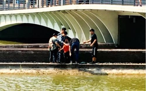 儿童河边玩耍不慎落水 天大学子齐心协力机智救人