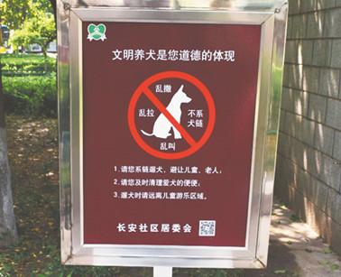 拒绝宠物排泄物污染 周村一社区首推宠物公厕