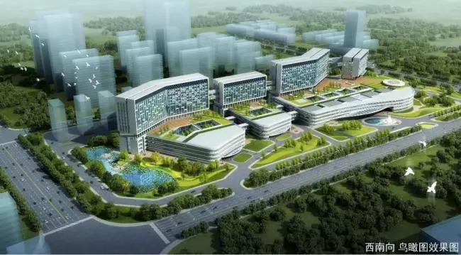 高标准推进市立医院项目建设!