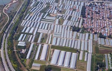 航拍寿光弥河两岸蔬菜大棚 村民正积极回复生产