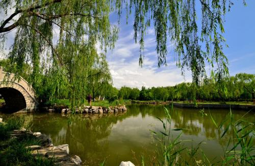 省国家园林城市复查组到聊城进行实地复查