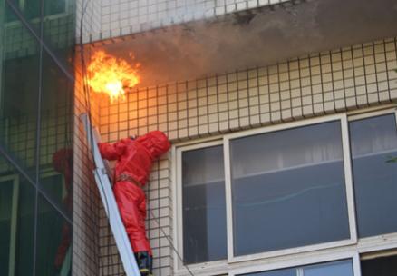 博山一校园发现巨型马蜂窝 消防出手除隐患