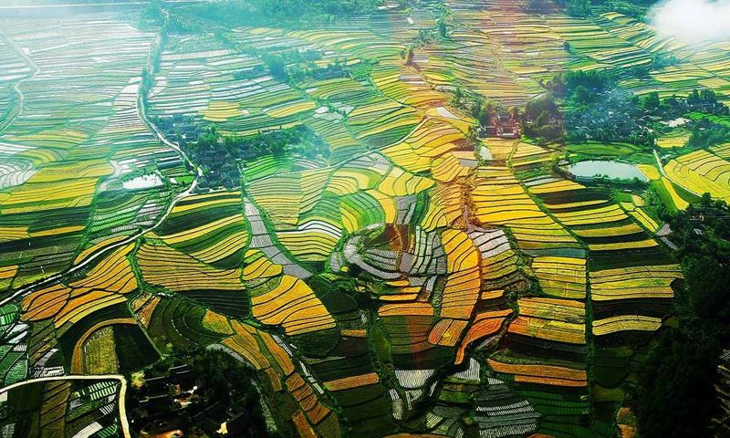 牢牢把握农业农村现代化这个总目标