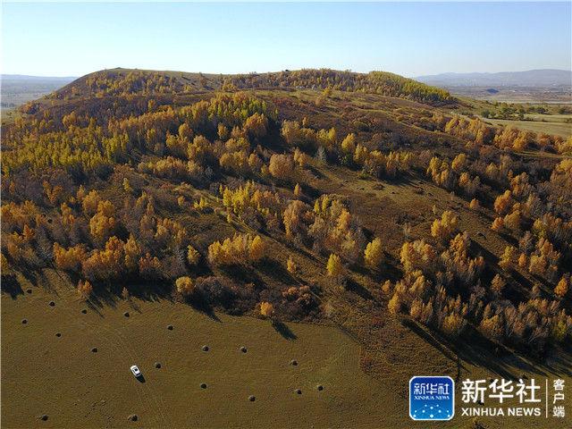 这是10月2日在河北省承德市御道口风景区拍摄的夜幕下的草原.