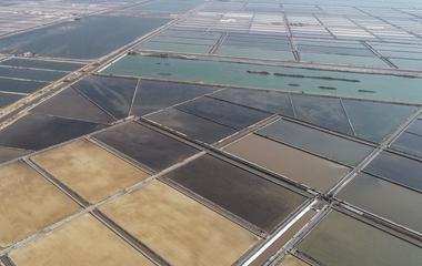 滨州:五彩斑斓海盐田 金秋十月收盐忙