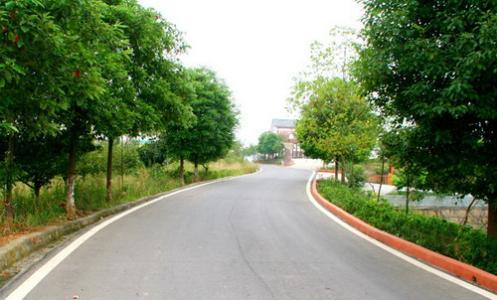 茌平:8个乡镇公路改造争取10月底前完工