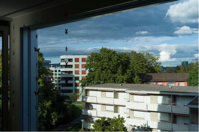 瑞士逾3成房屋中住着独居者 两口之家最多