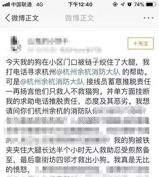 """网民质疑消防""""只救人不救猫狗"""",中国消防回应……"""