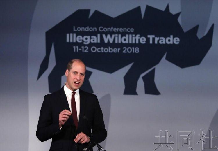 80个国家和地区聚首英国共商打击偷猎野生动物
