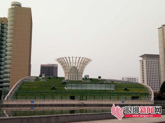 临沂绿化行政服务中心两处屋顶 面积约8200平方米