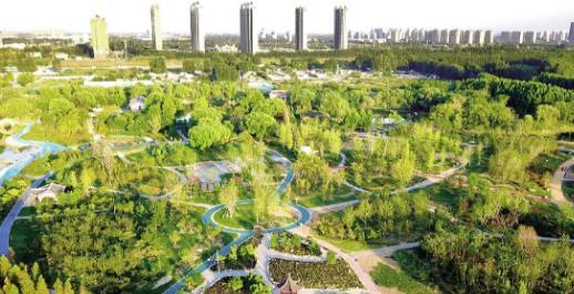 聊城:做好绿色文章 谱写生态新篇章