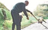 淄博人民公园游园小路翻新 工期1个月