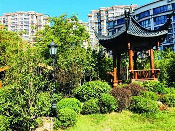 """青岛口袋公园变""""江南园林""""居民每天都想来转转"""