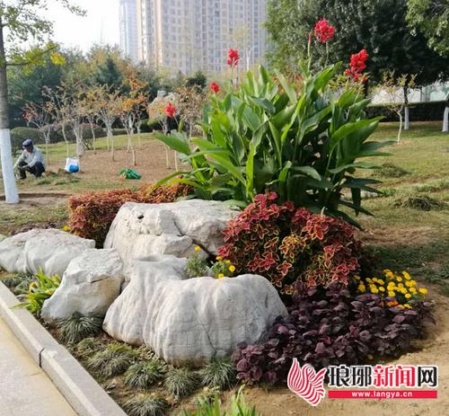 临沂滨河小埠东管理所因地制宜打造园林秋季景观