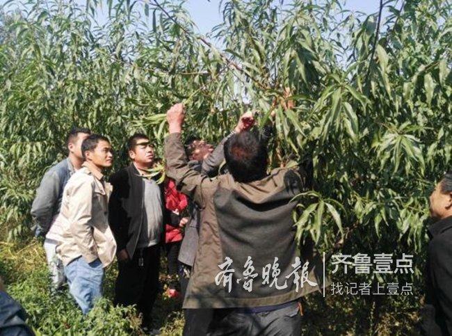 菏泽市科技局科技帮扶进村,专家手把手现场指导技术