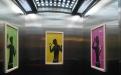 《淄博市电梯安全条例(草案修改稿)》提请审议