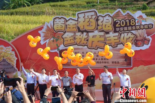 福建华安举办首届丰收节 助力乡村振兴
