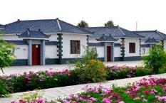 聊城3村庄入选首批省级美丽村居试点