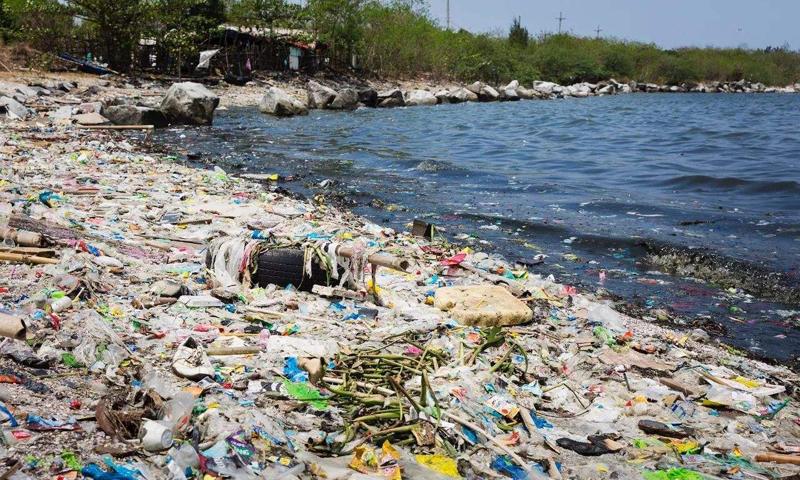 全球每年仅有10%塑料被回收利用