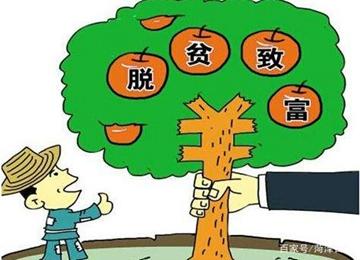 吕陵镇:特色产业引领振兴之路