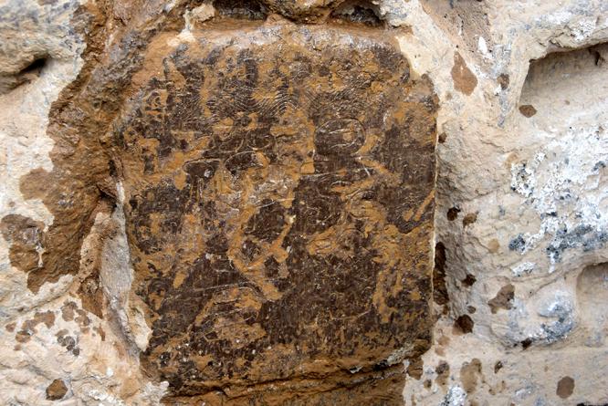 2018年10月4日,在山东醉一斗酒业厂址挖出的景隆寺残石。 (2).jpg