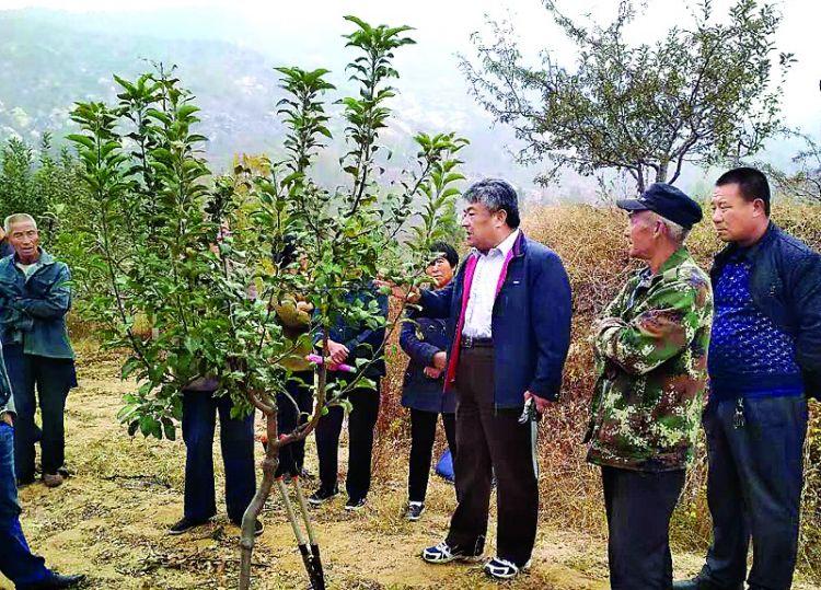 莱城区林业局:技术下乡服务果农