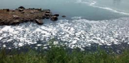 沂源:非法处置危险废物污染河水8人获刑