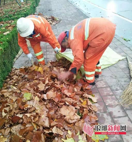 降雨过后叶落下 临沂环卫工人保证道路卫生勤清扫