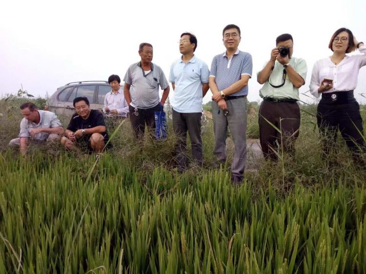 职业农民职称申报开始啦!截止时间为2018年11月25日