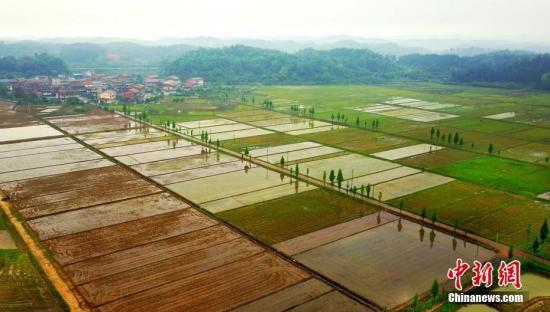 两部门:加强农村饮用水水源保护 解决养殖业污染