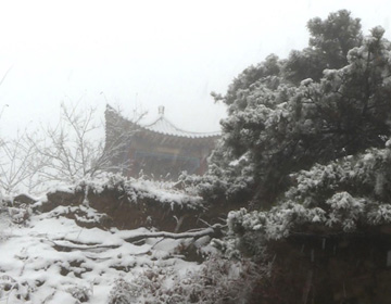68秒|漂亮!青州仰天山临朐沂山迎来入冬首场降雪